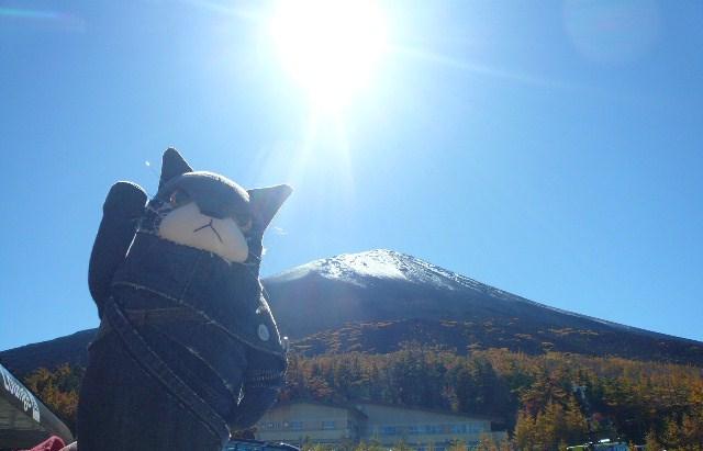 エリア 富士山に行く