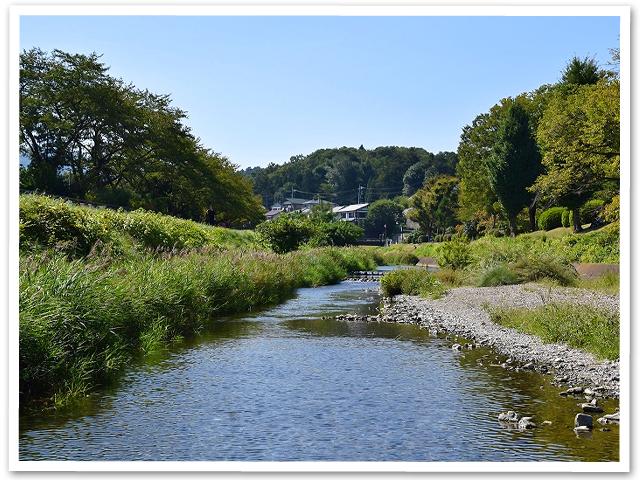 お散歩☆南浅川