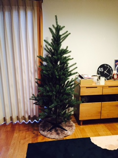 20151120_tree
