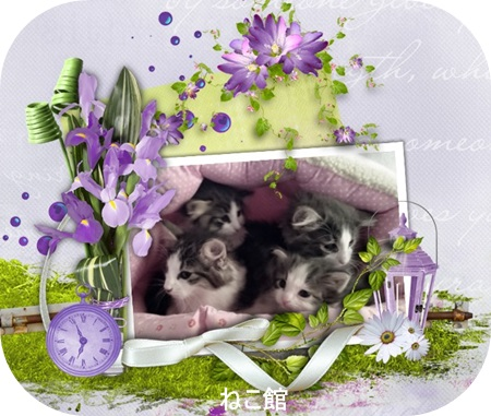 blog10_201511182302465b3.jpg