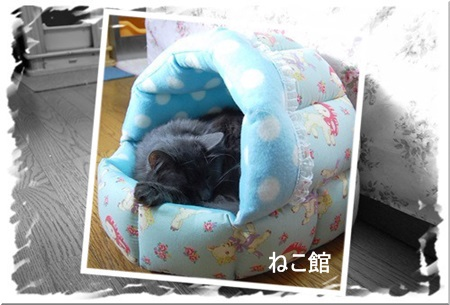 blog1_2015102314215998b.jpg