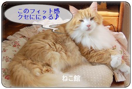 blog5_20151020095257b87.jpg