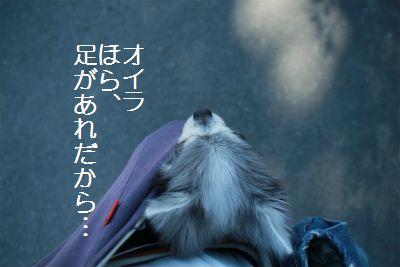 IMG_3072.jpg