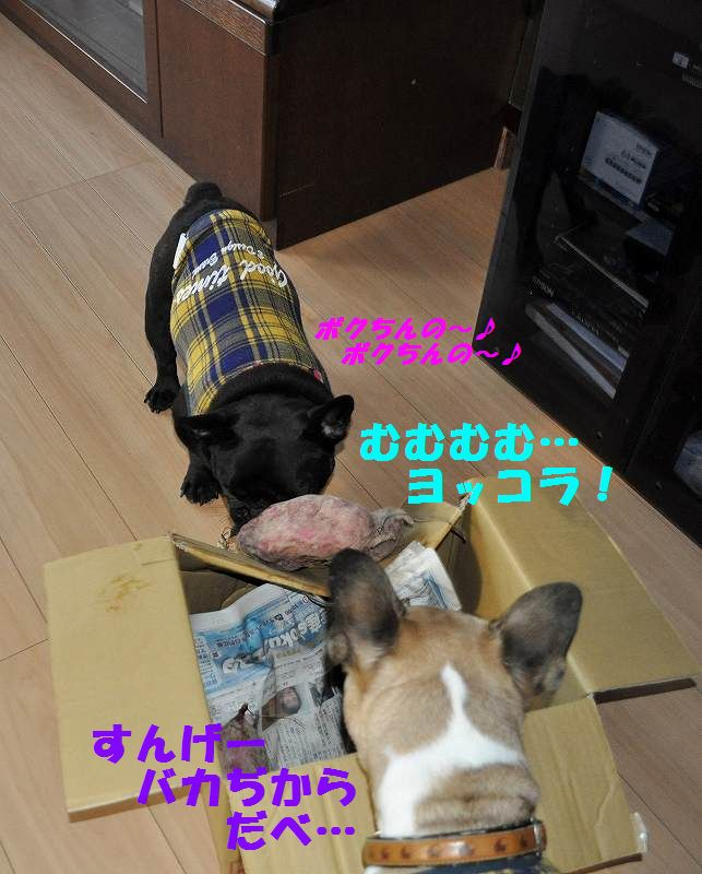 DSC_0010_201510060916270c6.jpg