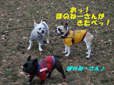 DSC_0023_20151110172319c2c.jpg