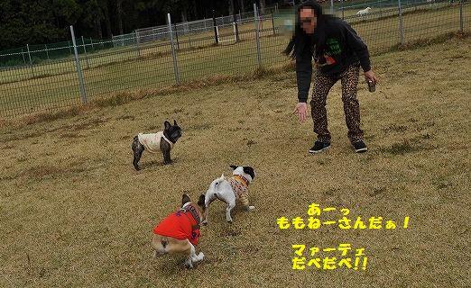 DSC_0051_20151105131746273.jpg