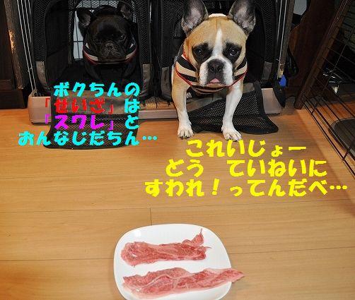 DSC_0105_2015102814533073c.jpg