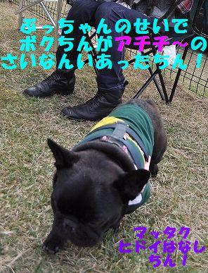 DSC_0118_20151104164913cd2.jpg