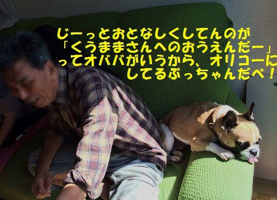 IMG_3583_20151024144113971.jpg