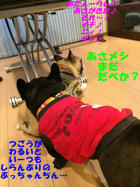 IMG_3864.jpg