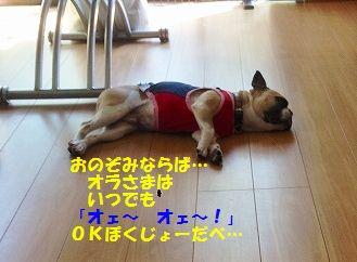 IMG_5928.jpg