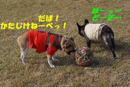 akirama.jpg