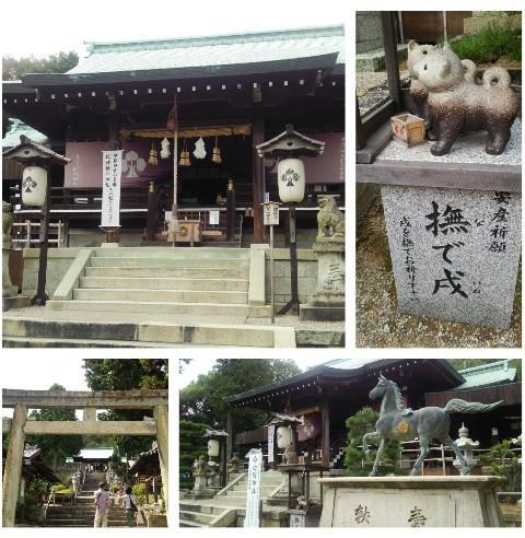 平成27年9月19日白國神社