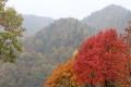秋の旅行1