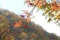 秋の旅行14