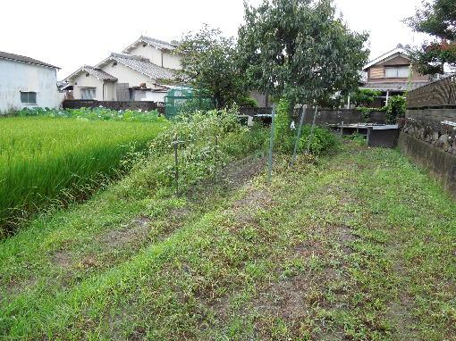 6.耕耘前の畑