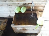 人吉温泉 しらさぎの湯 (3)