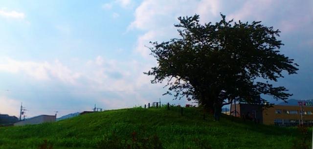 平塚塚越古墳 (640x306)