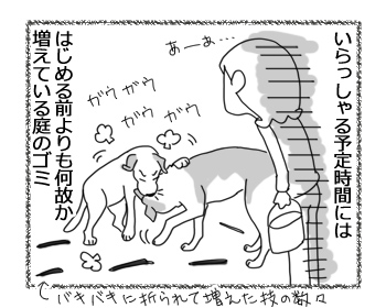 羊の国のラブラドール絵日記シニア!!「向きな作業」4