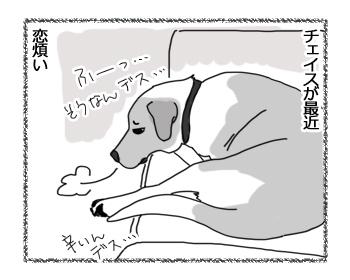 羊の国のラブラドール絵日記シニア!!「チェイスの恋のお相手」1