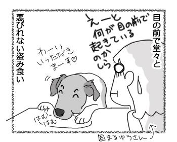 羊の国のラブラドール絵日記シニア!!「わかりまシタ」2