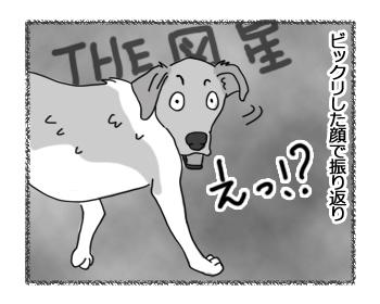羊の国のラブラドール絵日記シニア!!「心コミュニケーション」3