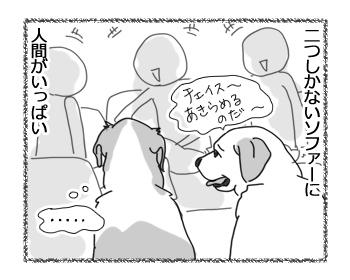 羊の国のラブラドール絵日記シニア!!「ボクのはじめてのおもてなし」1