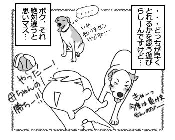 羊の国のラブラドール絵日記シニア!!「モッテコイ我が家流」4