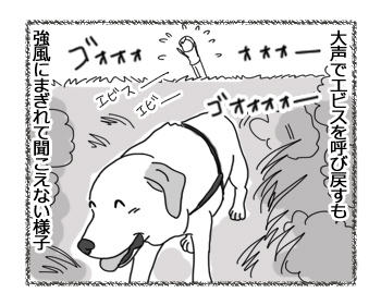 羊の国のラブラドール絵日記シニア!!「強風めっ!Part1」4