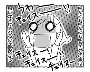 羊の国のラブラドール絵日記シニア!!「強風め!」3