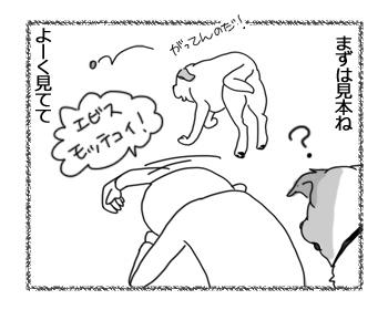 羊の国のラブラドール絵日記シニア!!「モッテコイ取得」2