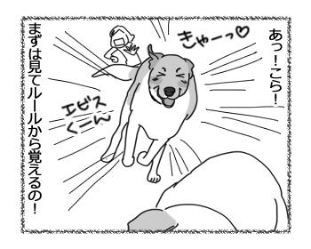 羊の国のラブラドール絵日記シニア!!「モッテコイ取得」3