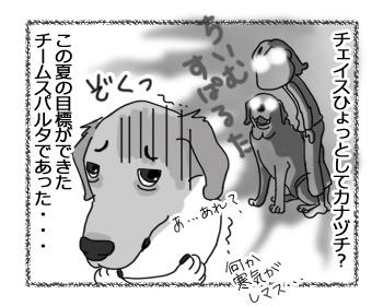 羊の国のラブラドール絵日記シニア!!「チェイスの予感」4