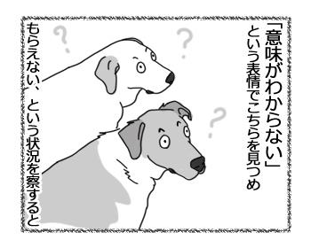 羊の国のラブラドール絵日記シニア!!「兄弟の表情」3