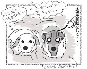 羊の国のラブラドール絵日記シニア!!「ハードスケジュールとアシスタント」2