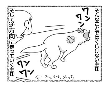 羊の国のラブラドール絵日記シニア!!「主任さんへ」6