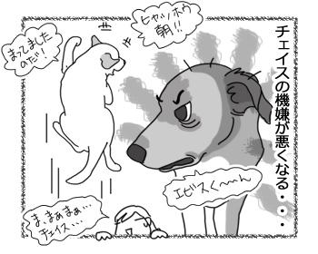 羊の国のラブラドール絵日記シニア!!「夏になったら・・・」4