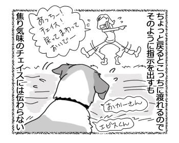 羊の国のラブラドール絵日記シニア!!「チェイスの挑戦」2