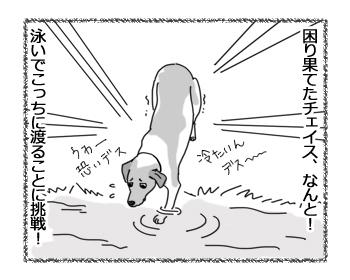 羊の国のラブラドール絵日記シニア!!「チェイスの挑戦」3