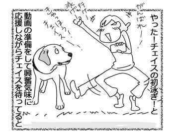 羊の国のラブラドール絵日記シニア!!「チェイスの挑戦」4