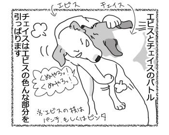 羊の国のラブラドール絵日記シニア!!「おでこはやめなよ」1