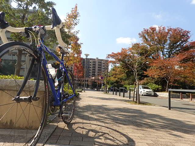 AMサイクリング (22)