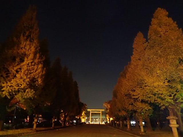靖国神社夜 (6)