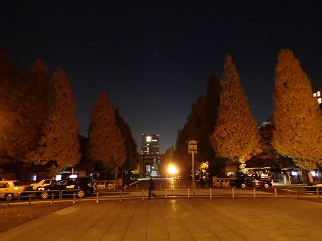 靖国神社夜 (9)