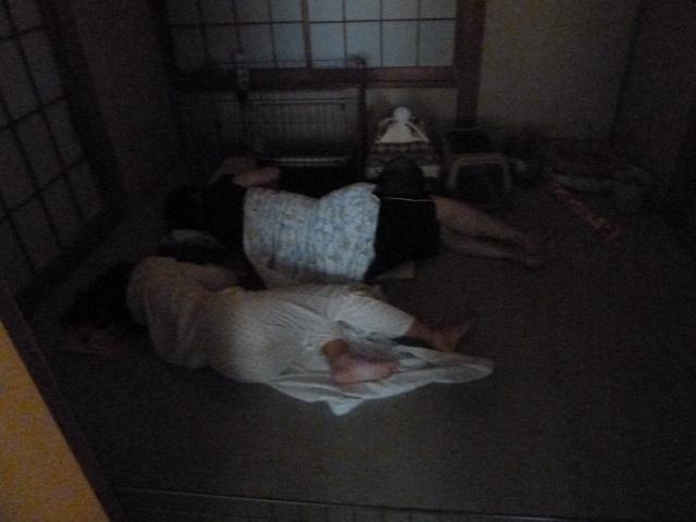 150823ポン太添い寝①