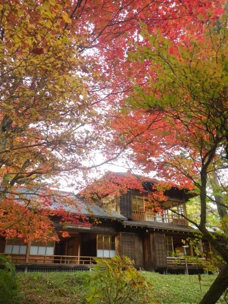 田のお庭②
