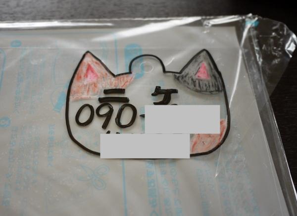 P1240738 (600x437)