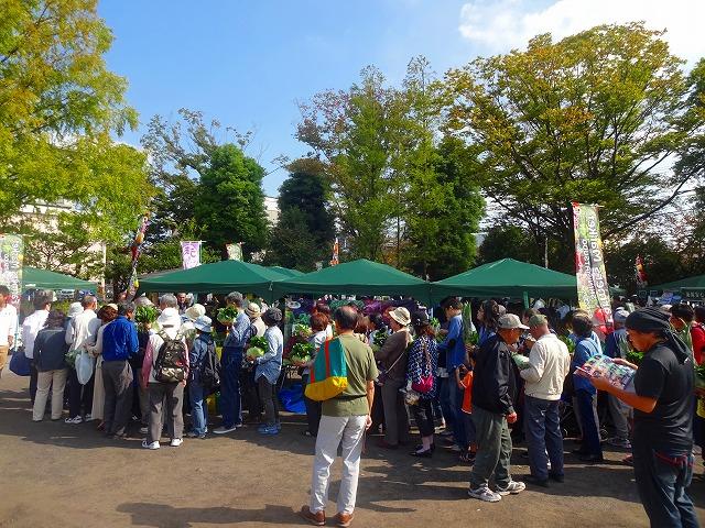 第2回新松戸収穫祭 (4)