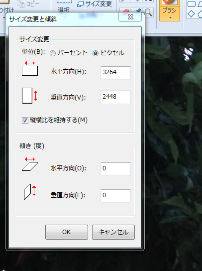 サイズ変更ピクセル
