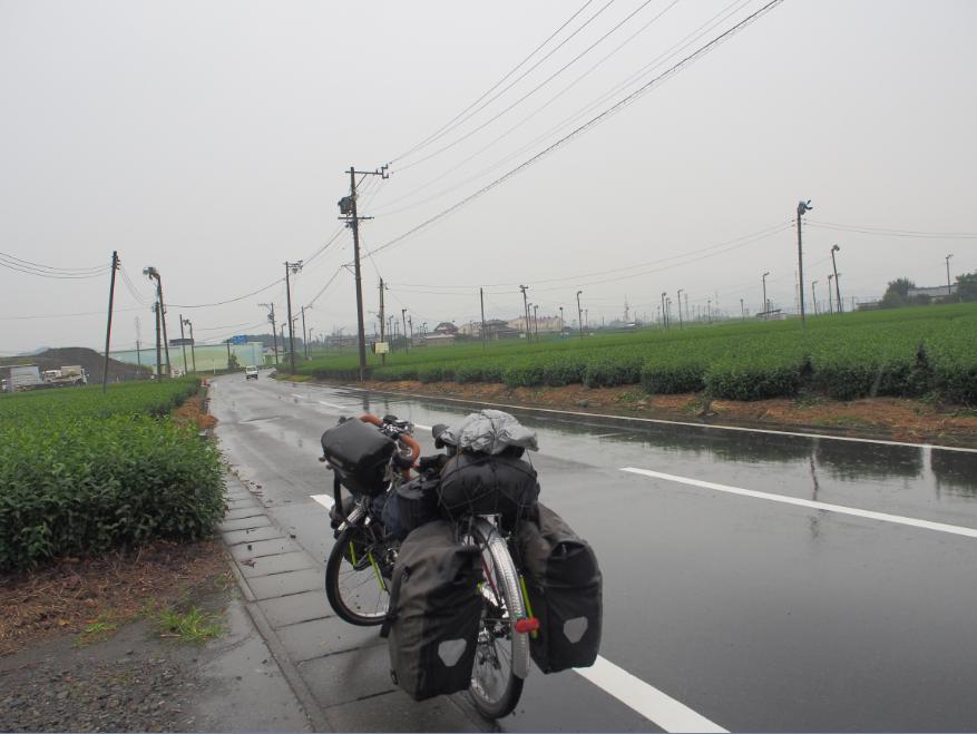 20150913自転車茶畑